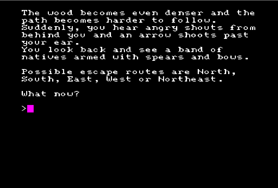 Quest for the Dragon Sword Text Adventure